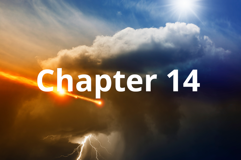 The Transitional Generation Chapter 14