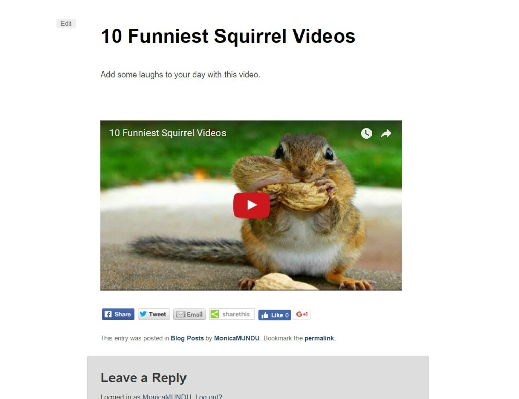 Preview YouTube Video on WordPress Blog