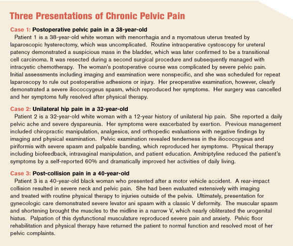 pelvic floor presentations