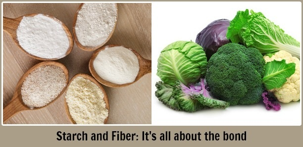 starch and fiber digestive enzymes