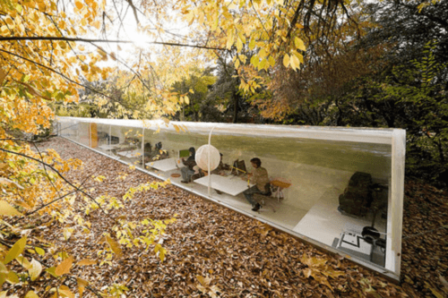 A beautiful office with glass walls in the middle of the woods