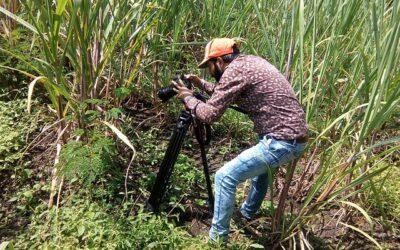 A filmmaker shooting a video outdoors