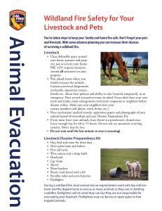 Animal Evacuations