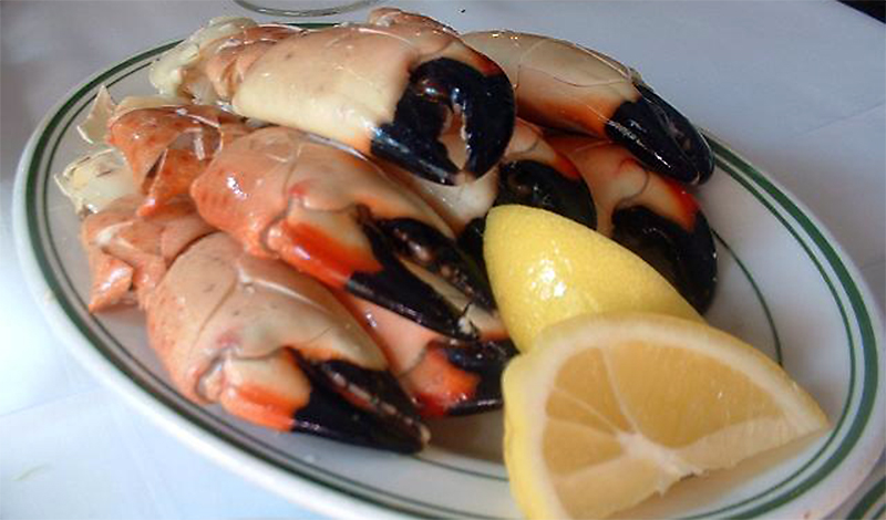 stone crab claws photo wikipedia by Veronica ML, Brooklyn, NY