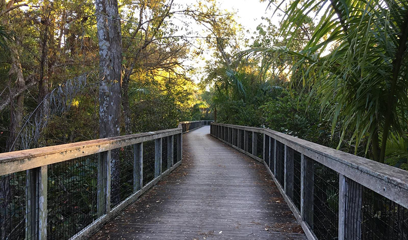Conservation Collier PHoto: https://www.colliercountyfl.gov/your-government/divisions-a-e/conservation-collier