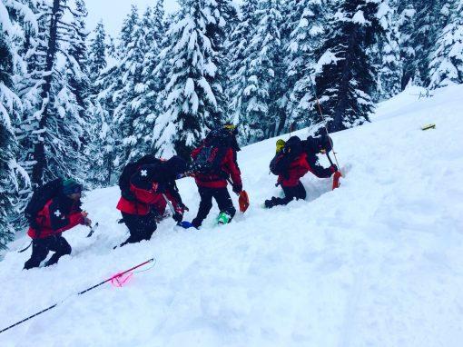 Pro Avalanche Rescue