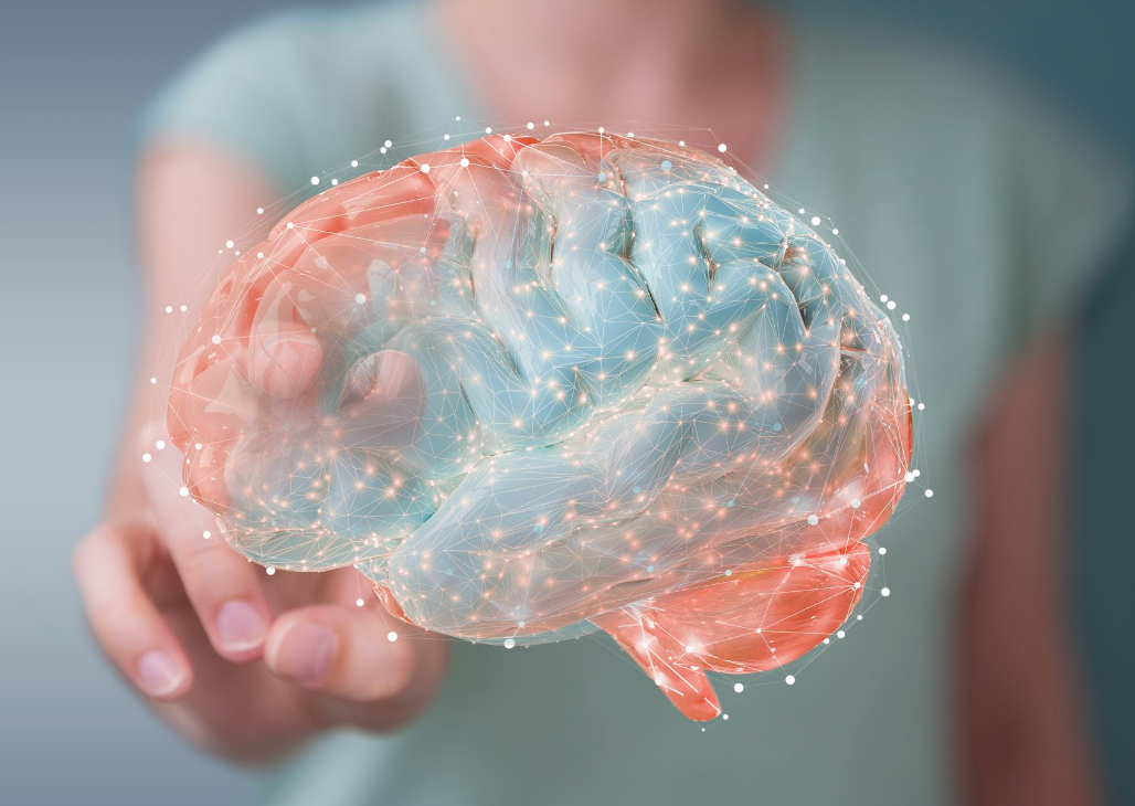 How To Heal A Brain: A Story of Trauma, Addiction, and EMDR
