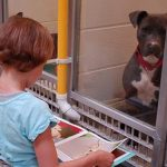 Children Read To Shelter Dogs
