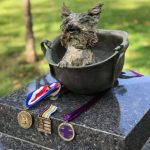 The Tiniest Dog Becomes A War Hero