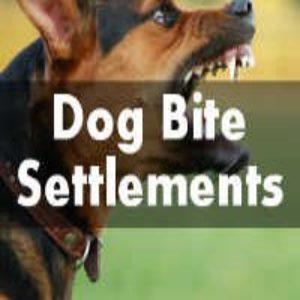 dog bite settlement