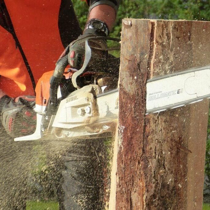 man-cutting-tress-using-chainsaw-209229