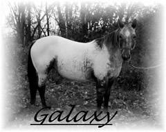 Galaxy240x192