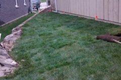 Sod Installation - FRESH GRASS - Kentucky Bluegrass North Bay Ontario 6
