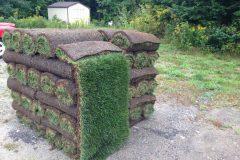 Sod Installation - FRESH GRASS - Kentucky Bluegrass North Bay Ontario 2