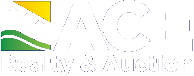 ACE Realty & Auction