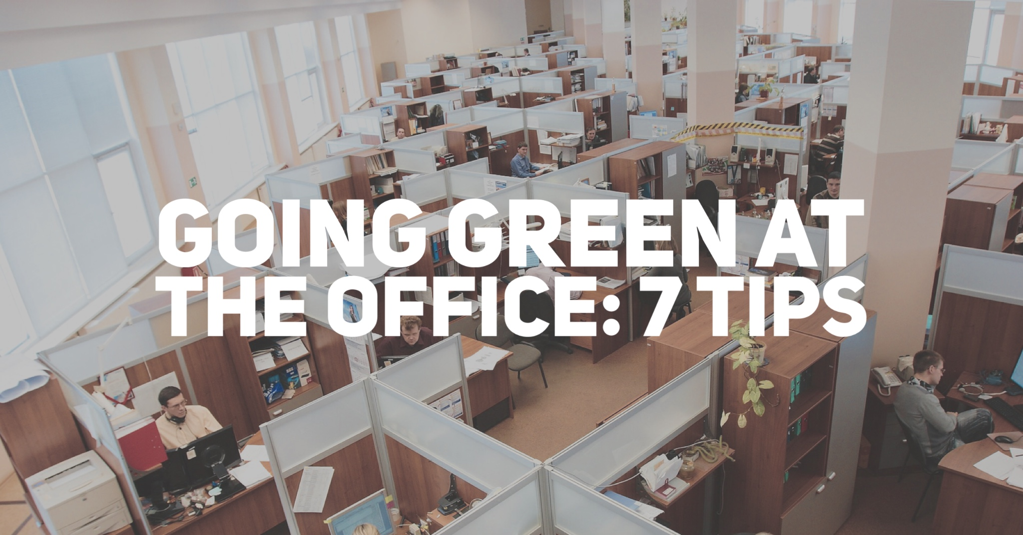 Going Green at the Office: 7 Tips