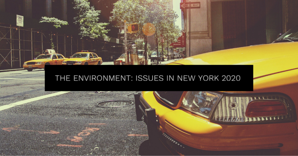 The Environment - Issues in New York 2020