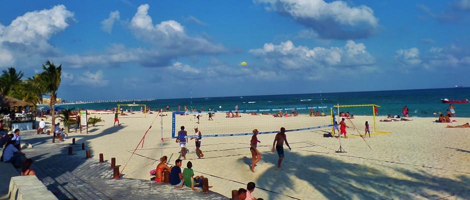 seaweed Playa Del Carmen