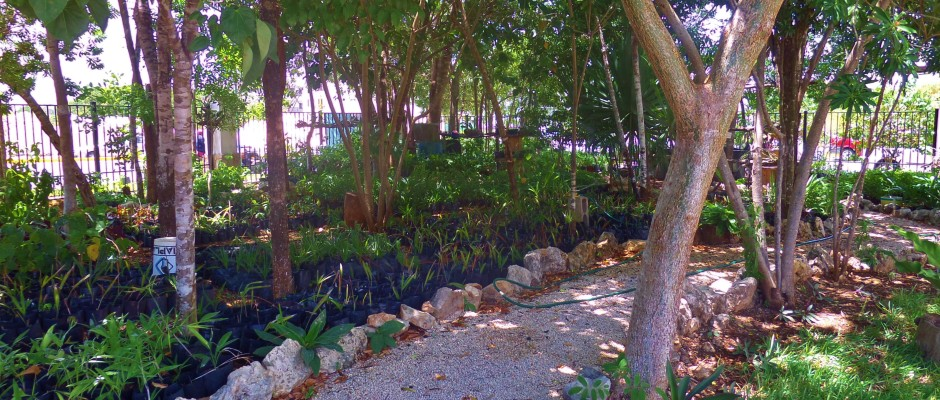 New Condo in Playa Del Carmen