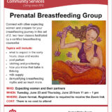 Prenatal Breastfeeding Group: June 23+25