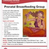 Prenatal Breastfeeding Group: June 23+25