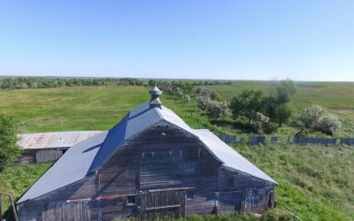 Hyde County Land Auction