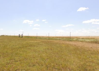 Hyde County Grassland
