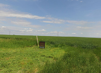 Sully County Cropland