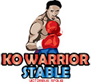 KO Warrior Boxing