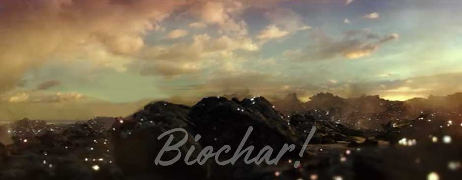 Biochar: The Carbon Reef