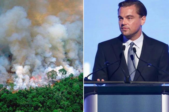 Declining Amazon Fire in the world, donated $ 7 million to Titanic actor Leonardo
