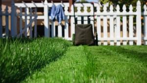 East Cobb Grass Sod