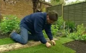 Try laying sod in Spring for a lush new lawn.
