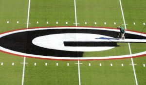 Georgia football field turf is Tifway 419.