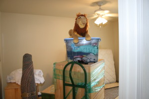 "Mufasa reigns over ""Mindy's"" domain, as he has since she was a preschooler."