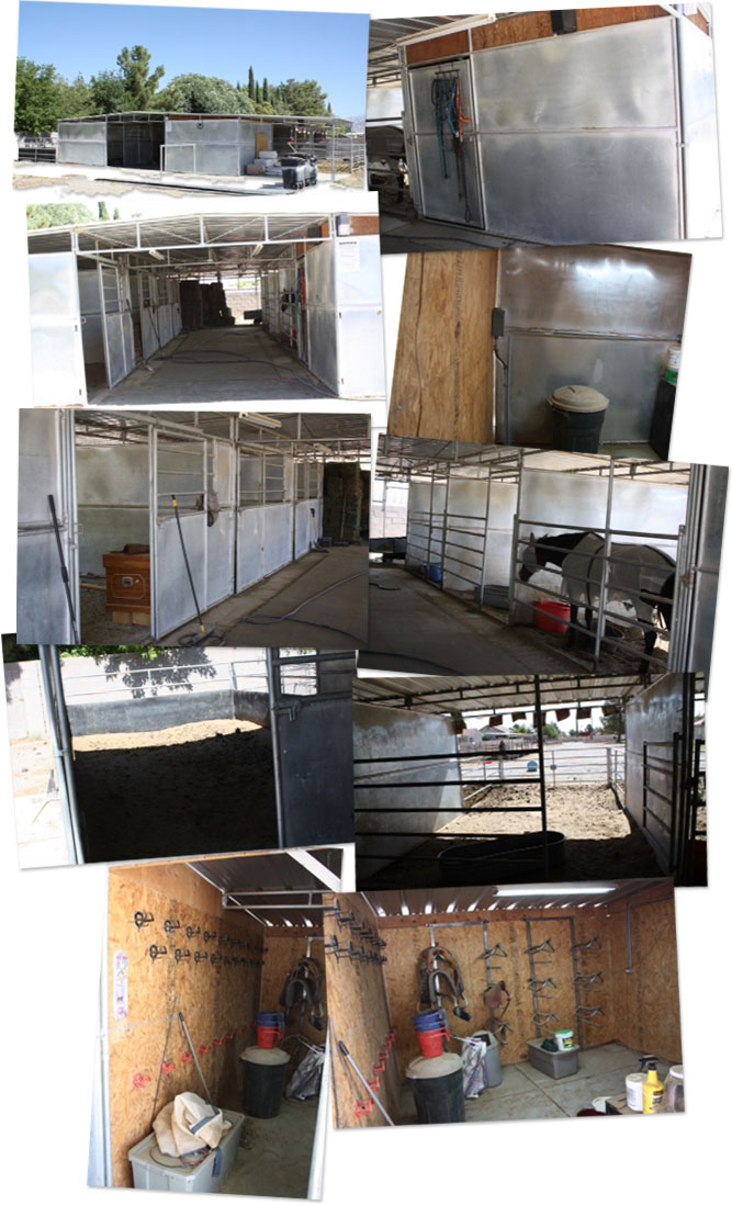 New Barn for Horse Rescue