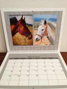 2018 Dust Devil Ranch Horse Calendar