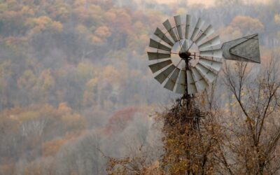 Finding Fall Colors in Pepin County