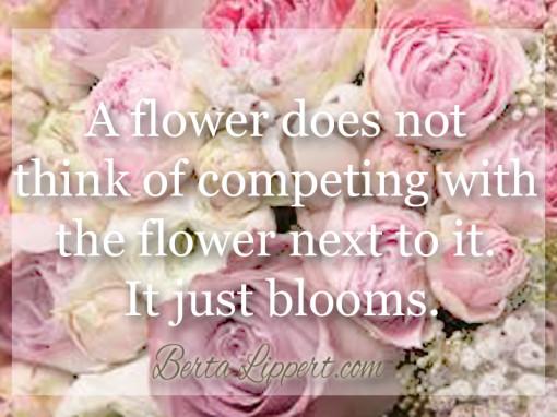 bloom-berta-lippert