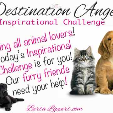 destination-angel-furry-friends-inspirational-challenge