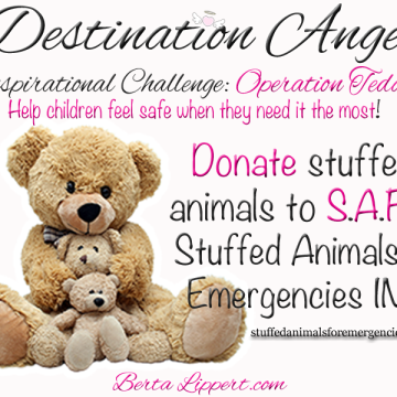 destination-angel-inspirational-challenge-operation-teddy