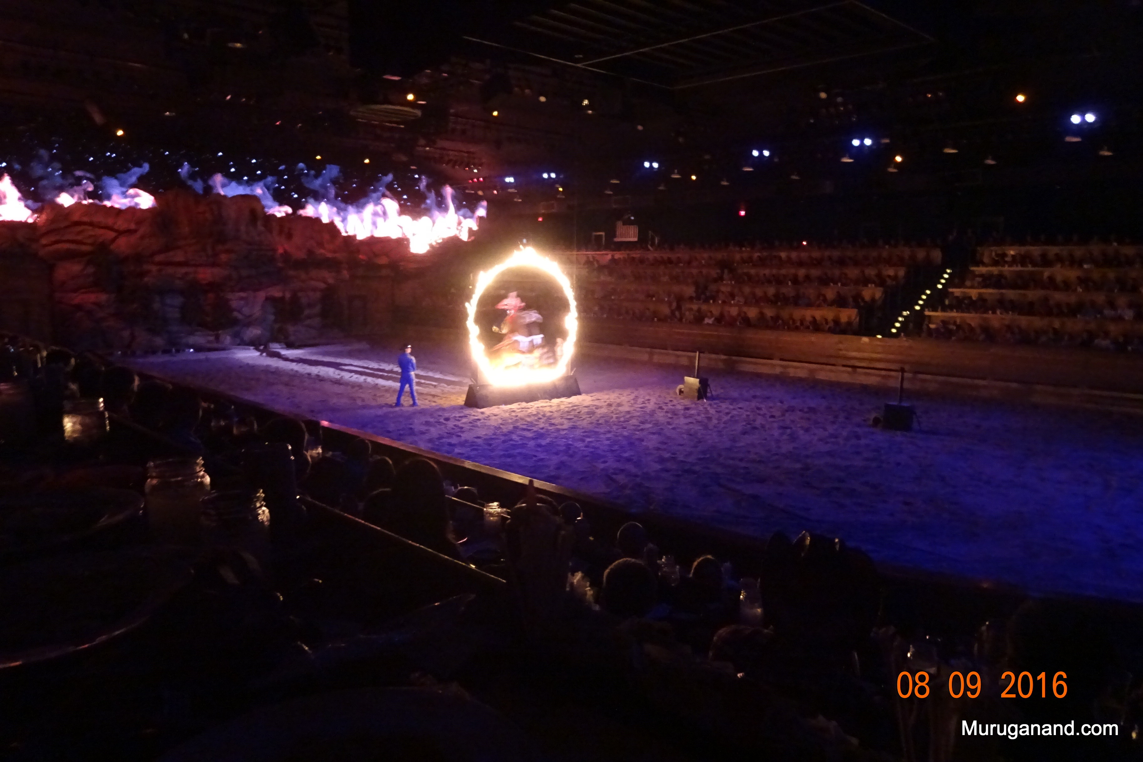 She steers the horse into the ring of fire to the delight of the audience.