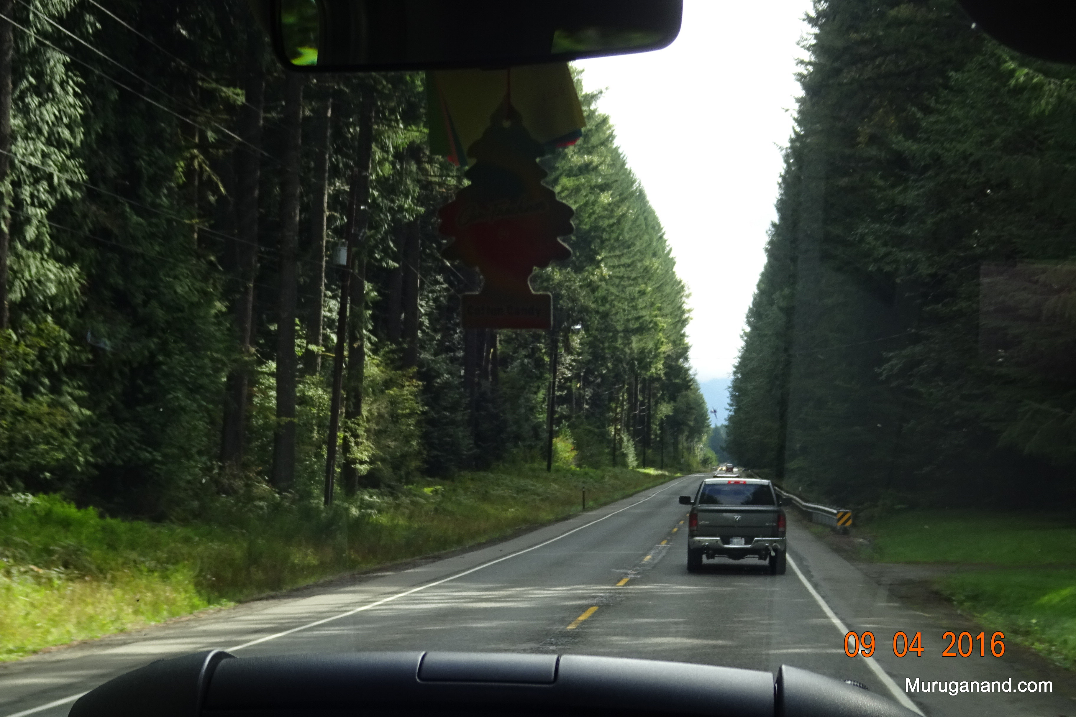 Traveling by van to Mt. Rainier from Seattle. Scenic road.