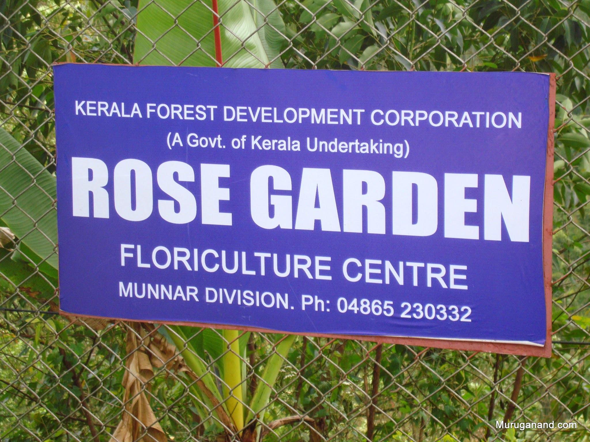 Start sight seeing with Rose Garden