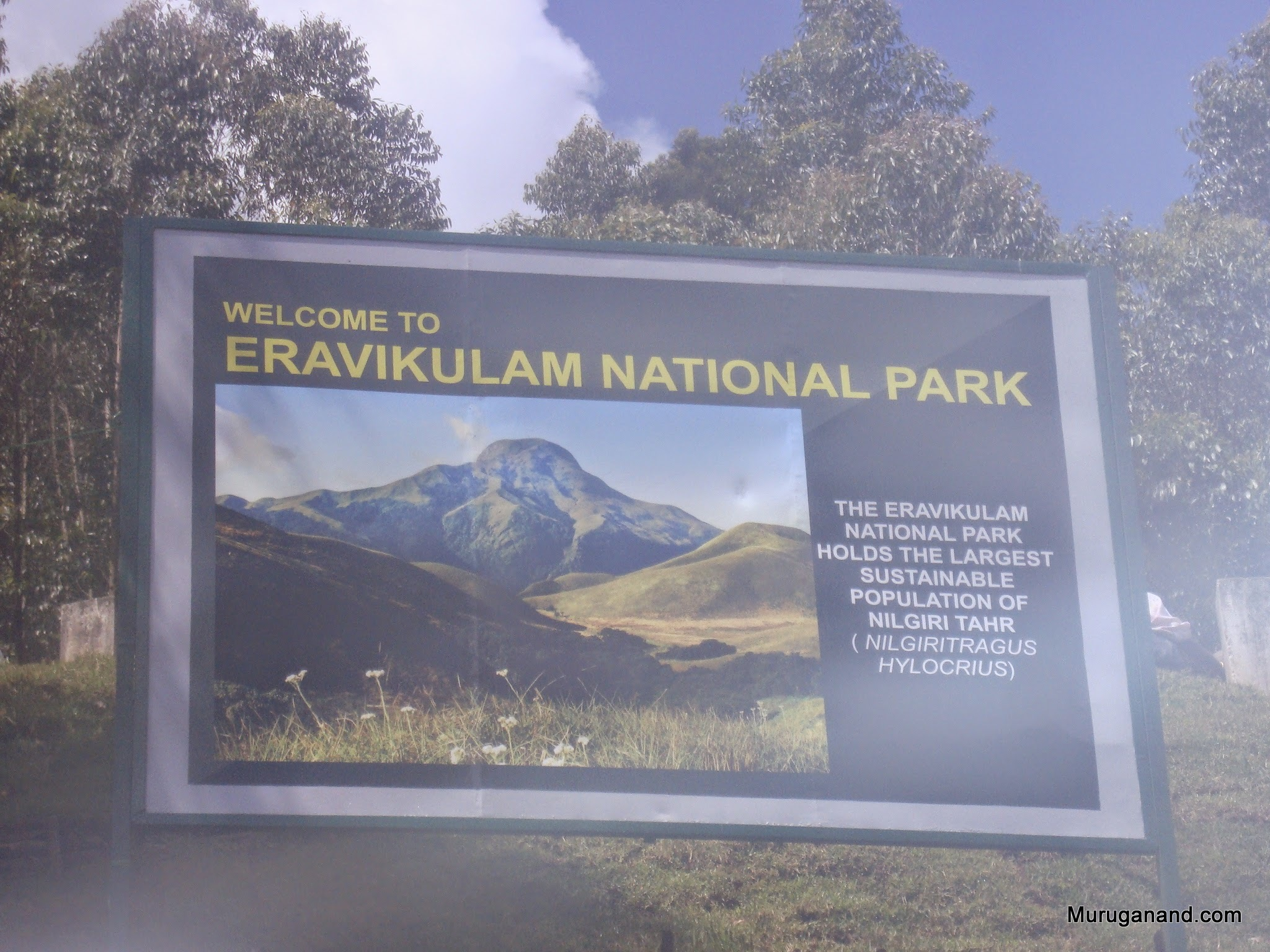 Best national park in the South