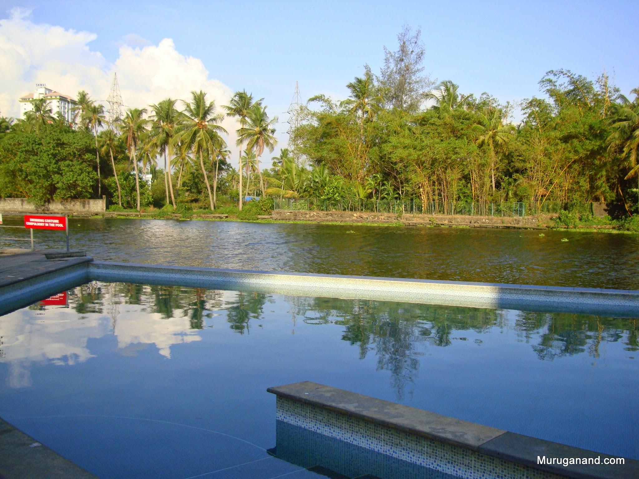 We stayed in Ernakulam: Hotel Mermaid- backyard