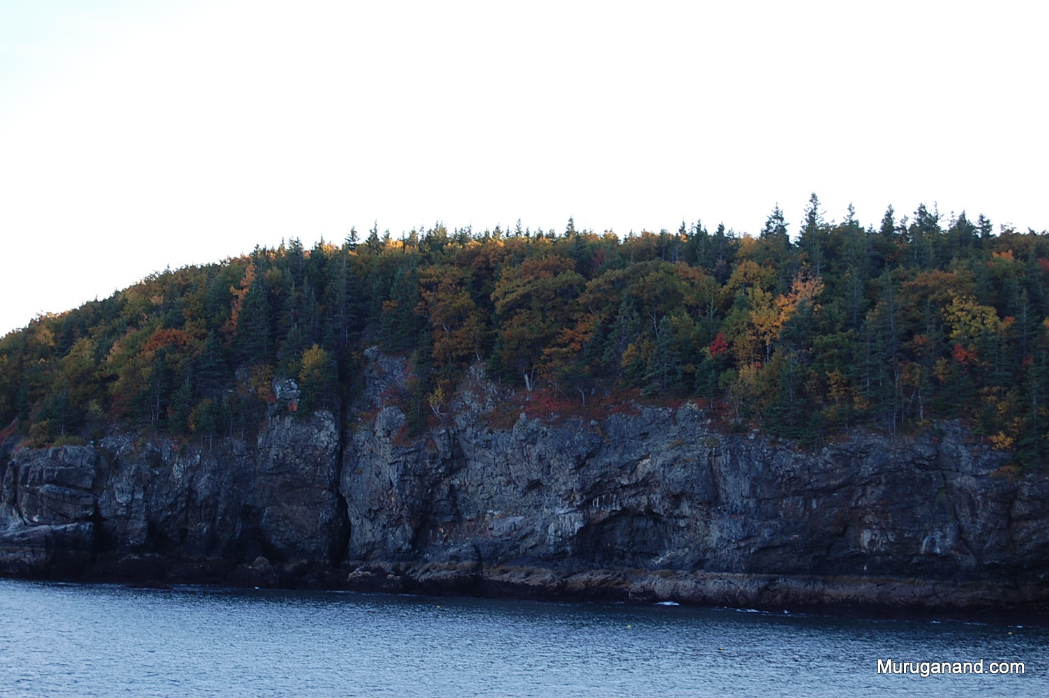 One of the porcupine islands.