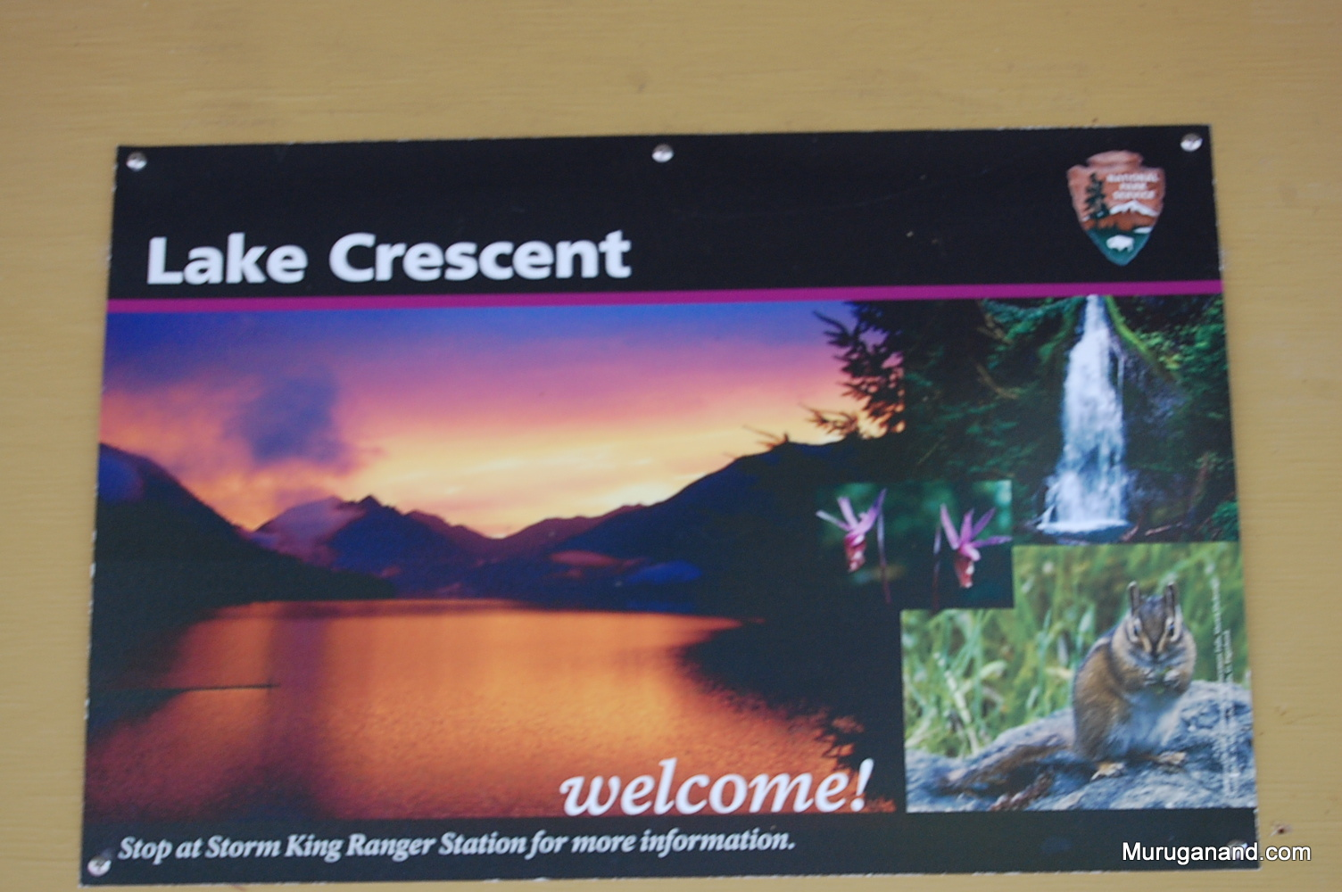 Lake Crescent is a popular attraction to observe scenery, fishing and kayaking.