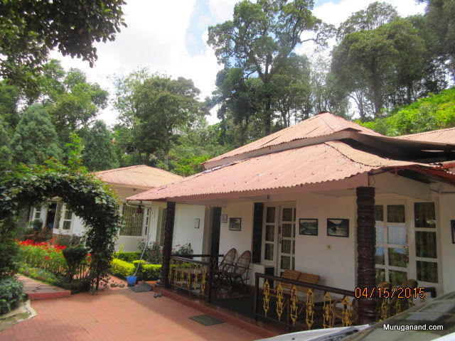 Nice cottage with cardamom plantation above