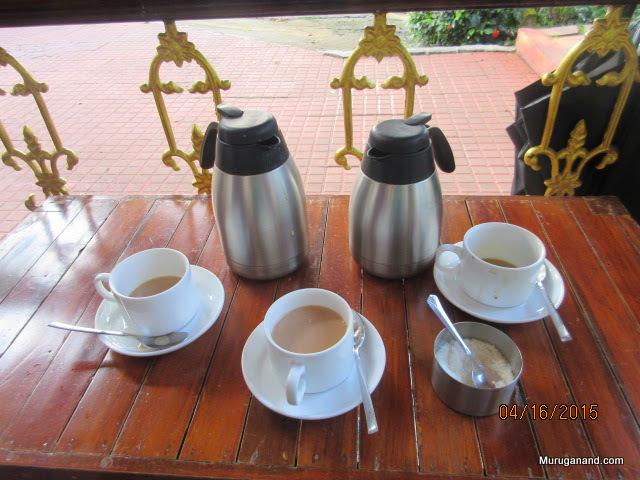Fine tea with fresh cardamom from local garden